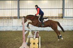 #RedHawkRupert, #GB_thoroughbred, jumping training, less than two months off the track here
