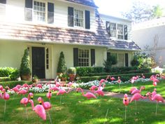 """If you read this article, they ask """"why flamingoes?"""" and the answer is """"Because they are just so tacky and gaudy""""    roflmfao! luv u Mel!"""