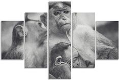 Take a look at the store    http://thousandface.myshopify.com/products/monkey-baby-canvas-wall-art-print-black-and-white-for-living-room-bathroom-home-decor-picture-multi-panel-framed-canvas-five-piece-set-picture-art?utm_campaign=social_autopilot&utm_source=pin&utm_medium=pin