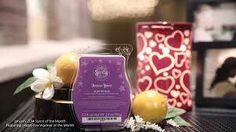 """""""Forever Yours"""" scent of the month by Scentsy"""