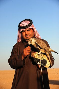 Keeping falcons and go for a hunt with them is popular in Saudi Arabia. A falcon is very expensive, USD 20.000 or even more is the going rate. The owners take very well careof their falcons. To keep the birds fit, they let them stretch their wings reguraly, when they let them hunt a pigeon they released.