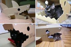 Casinha para gatos em formato de tubarão