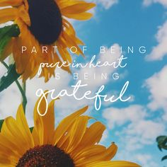 """""""Part of being pure in heart is being grateful."""" LDS Quotes #lds #mormon…"""