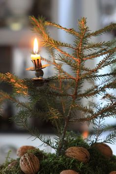 Light a candle for those who have lost loved ones this year.