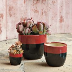 Claude Indoor Planters