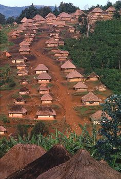 Village in eastern Zaire, Africa. **