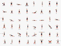 dribbble_workout.gif (512×384)