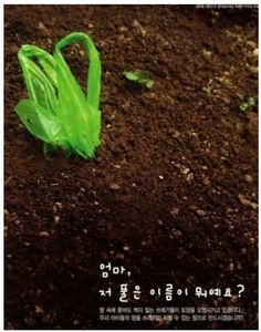 환경보전 을위한 디자인 포스터 : 네이버 블로그