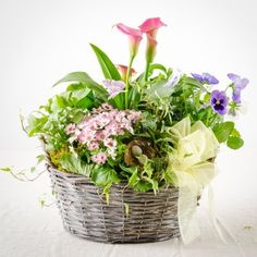 Cheery Flowering Planter