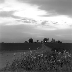 Robert Adams. Platteville, Colorado 1980. From Summer Nights, Walking