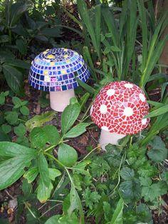 Mushrooms in the garden :)