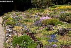 Sichtungsgarten Weihenstephan, Freising  http://www.florilegium.de/blog/gaerten/sichtungsgarten-weihenstephan-bei-freising.html