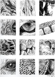 Texture study for ink texture sketch, texture drawing, texture art, s Texture Sketch, Art Texture, Texture Drawing, Visual Texture, Ink Pen Drawings, Gcse Art, Pen Art, Elements Of Art, Art Sketchbook