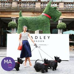 I have a friend who sends me lots and lots of great information. Like, where to buy a topiary frame that looks like a scottie, footage from the Commonwealth Games' scottie parade, cookies in …