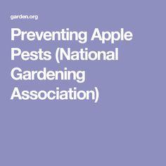 Preventing Apple Pests (National Gardening Association)