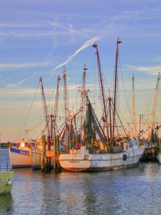 shrimp boats moored outside of historic Mayport Fishing Village at the mouth of the St. John River, Jacksonville, FL