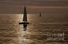 Sailboat Art, Sailboats, Pacific Ocean, The World's Greatest, Fine Art America, Sailing, Art Prints, Wall Art, Artwork