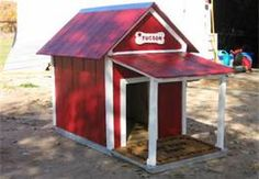 I like. ... we should add a porch to our dogs house