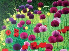 Alliums and Poppies by Susan Entwistle Capturing gardens and landscape with pointillism. Her work is striking and colourful. Framed Canvas Prints, Canvas Frame, Art Prints, Original Paintings For Sale, Square Art, Garden Painting, Limited Edition Prints, Poppies, Illustration Art