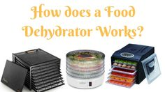 How does a Food Dehydrator Works