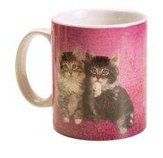 Tazza caffè con gatti. http://www.recordit.com/