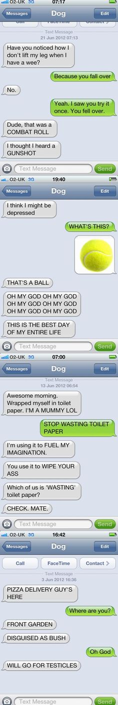 I always love 'texts from dog'.