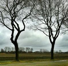 Op de grens van groningen en Drenthe