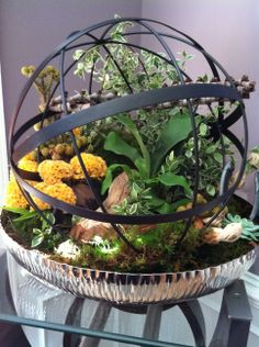 one of the favorites that I did....metals sphere with all live flowers and plants finished off with fresh moss!