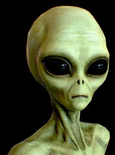 Scientist says Aliens in UFOs might be Earthlings from the Future - Aliens are Humans Aliens Guy, Les Aliens, Aliens And Ufos, Alien Gris, History Channel Meme, Ancient Aliens Meme, Alien Symbols, Alien Videos, Alien Pictures