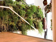 Indoor Living Wall Planter diy vertical farming   walled garden