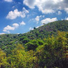 Cores da floresta da Tjica em uma das ruas da Freguesia que correm pelas montanhas, dentro da floresta