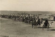 Asien Korps, Les allemands en Palestine