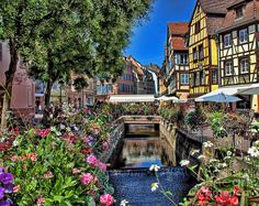 Flowers Along Canal In Colmar France