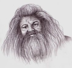 pencil drawings of luna lovegood | Rubeus Hagrid by *LilMissLeah on deviantART