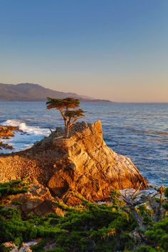 Average High Temperature in October: 68°FWhy We Love It: Though the California location might fool you, this charming seaside town located two hours south of San Francisco will make you feel like you've been whisked away to southern England with its foggy mornings, cypress trees and rugged coastlines. Feel free to bring your pup along with you for the weekend—dogs can run free on Carmel Beach and The Cypress Inn is known for being pet-friendly.