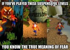 True meaning of fear Ahhh Crash Bandicoot!! haha this is sooo true