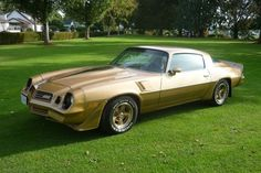 gold 1981 Chevrolet Camaro Mine was black and the first car I ever bought.Manual,T-Roof, Louvers, Silver Pin Stripping Chevrolet Camaro 1970, Camaro Iroc, Classic Camaro, 72 Chevy Truck, Sweet Cars, Classic Cars Online, American Muscle Cars, Hot Cars, Car Pictures