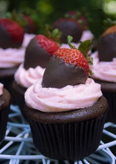 Cupcakes My Favorite