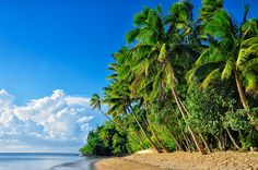 Beqa Lagoon Resort, Fiji