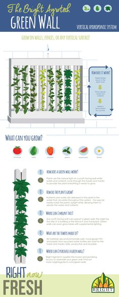 What is a Green Wall? Grow almost anything on your wall using ZipGrow towers. Would be great in a classroom or hallway with limited space! Read more at brightagrotech.com.