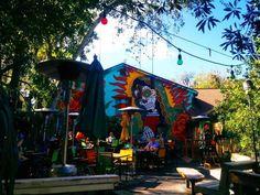 14 Restaurants in Florida to Try Before You Die (TacoLu,  Jacksonville Beach FL)