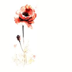 poppy tattoo meaning - Google Search