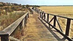 Isla Canela - The Beach (Huelva, Spain) Welcome to my channel!!! Subscribe: https://www.youtube.com/user/WonderBooks Iberostar Hotel Isla Canela: https://www.youtube.com/watch?v=zT99JyckCjM Music: ... https://youtu.be/WnMxY7lCQAk