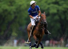 Passion for the sport, this is polo.