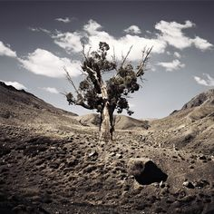 Bernhard Quade - Photography Represented in Spain by Victor Lope Arte Contemporaneo