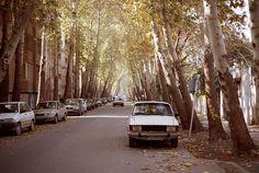 Esfahan, Iran / photo by Alireza Abbasy