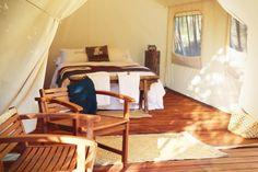 Kapiti Island » Canopy Camping Escapes
