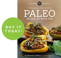 Paleo Recipes for Every Day, 70 Recipes for your Paleo Lifestyle E-Cookbook NOW AVAILABLE #paleo