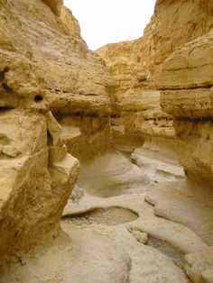The Negev Desert, possibly more than any other part of Israel, is the land of the Old Testament. Beginning with Abraham in the Book of Genesis, many biblical tales featuring Sarah, Isaac, Rebecca, and Jacob took place in and around the desert and its main city – Beer Sheba. The Caananites, Edomites, Nabateans, Philistines and other tribes mentioned in the Bible also resided in the Negev Desert. For this reason, important trade routes like Via Maris and the Spice Road ventured through the…