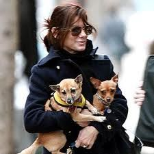 Sandra Bulluck and her 2 rescue dogs.